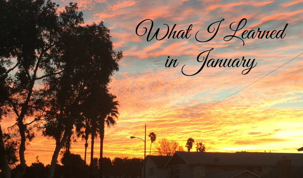 What I Learned in January
