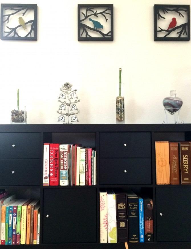 Birds over Bookcase