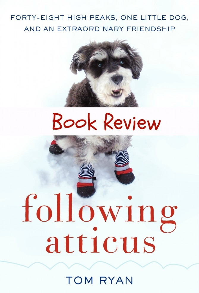 Following Atticus Book Review