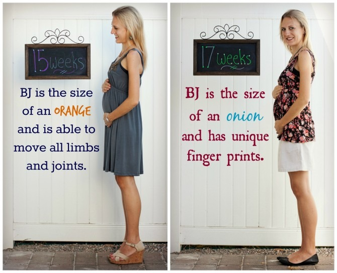 Baby J 15 and 17 Weeks