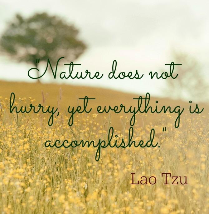 Quotable from Lao Tzu