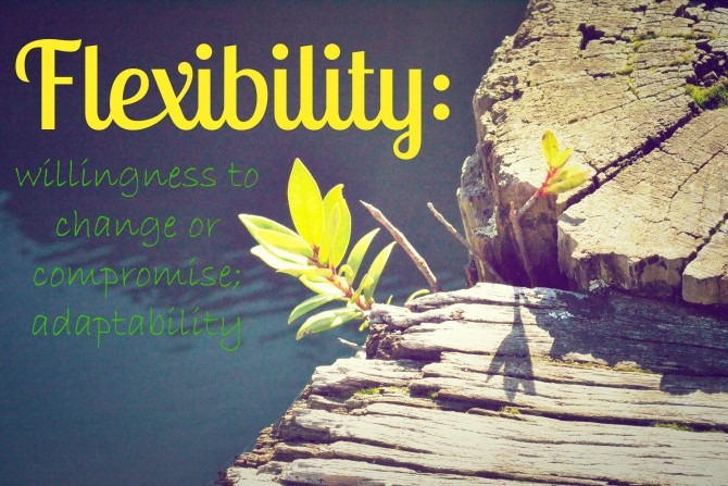 Flexibility Defined