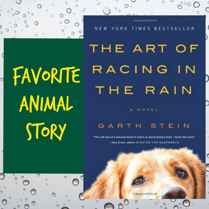 Favorite Animal Story: Racing in the Rain