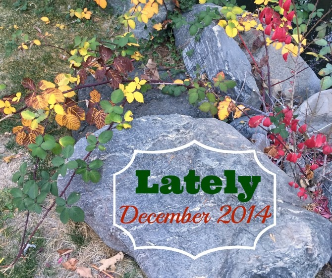 Lately December 2014