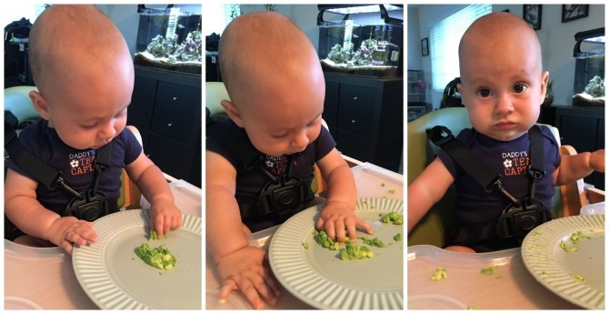 Charlie's First Taste of Avocado