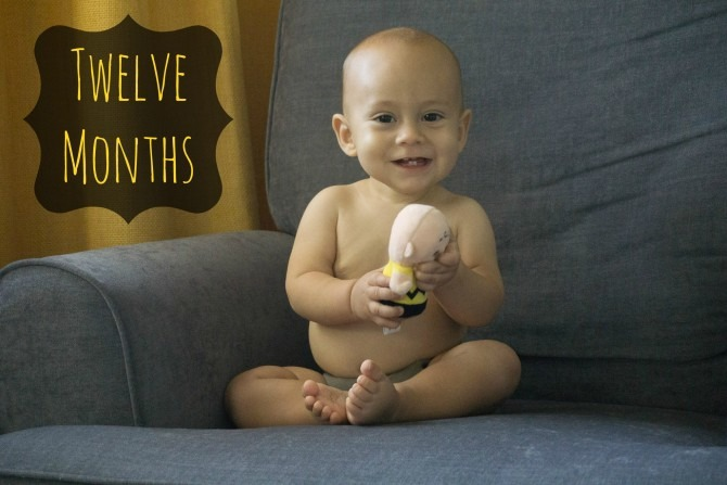 Charleston Michael and Charlie Brown Twelve Months