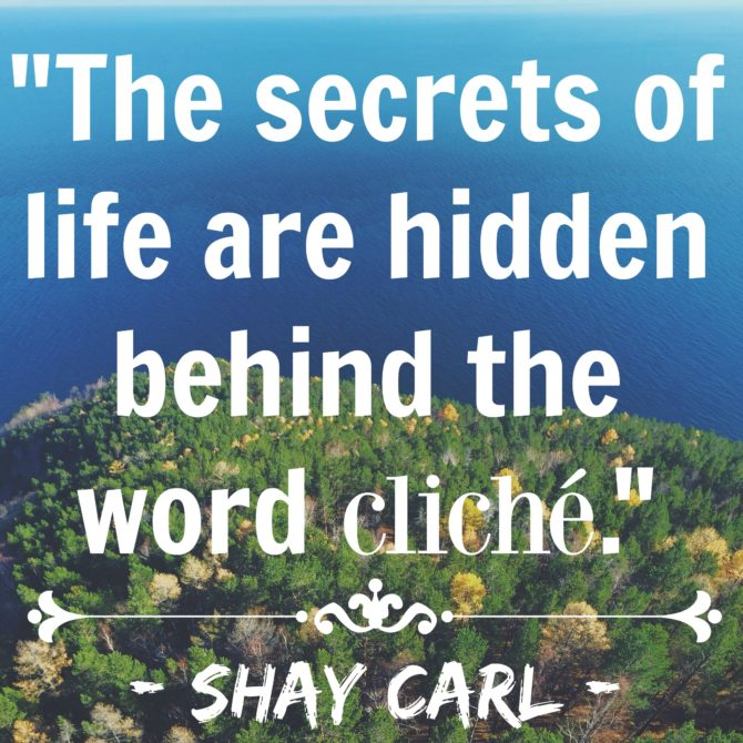 Quotable from Shay Carl