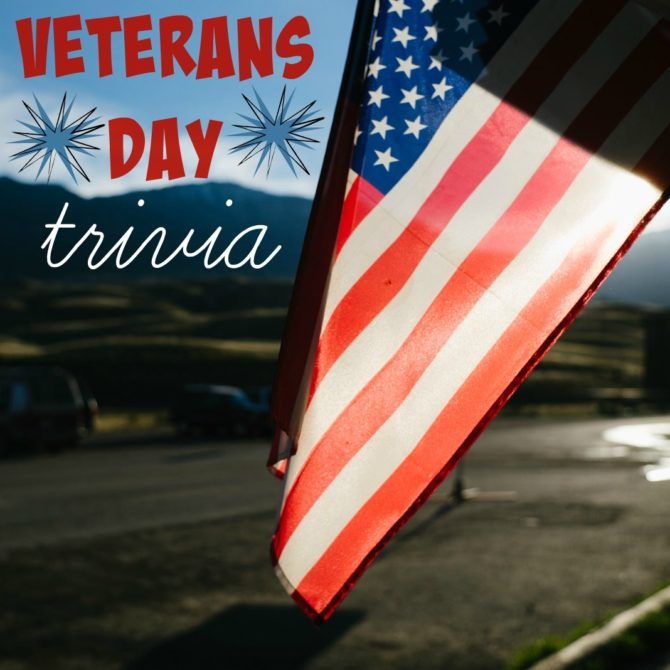 veterans-day-facts