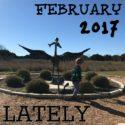 Lately // February 2017