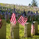 Let's Learn About Memorial Day